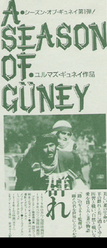 guney6.jpg